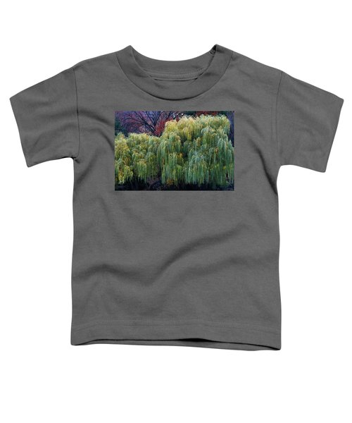 The Willows Of Central Park Toddler T-Shirt