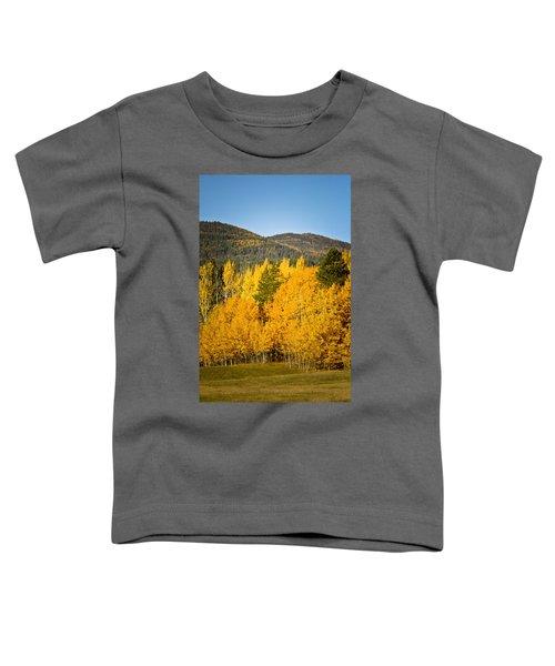 Them Thar Hills Toddler T-Shirt
