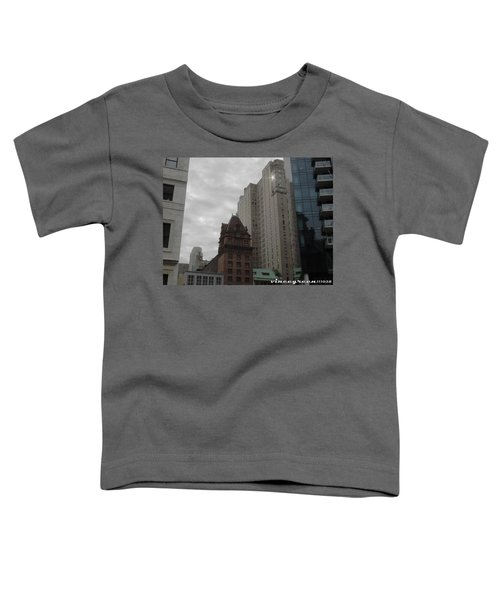 They Always Say It's Sunny In Philadelphia Toddler T-Shirt