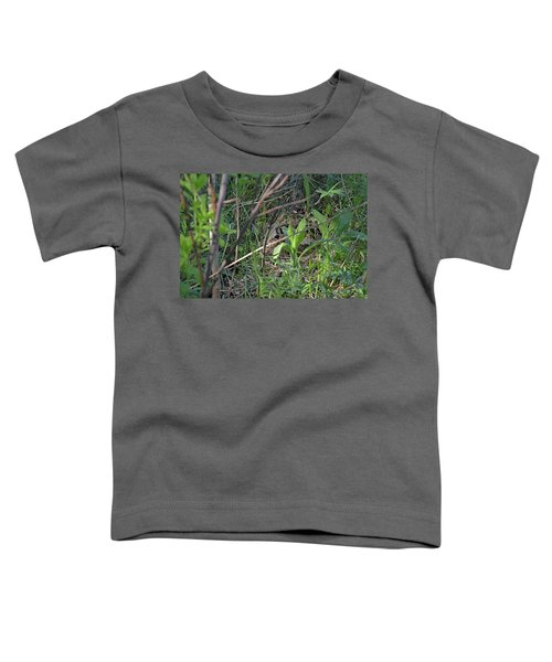 Those Velvet Eyes That Betray Its Camouflage Of The Nesting Woodcock Toddler T-Shirt
