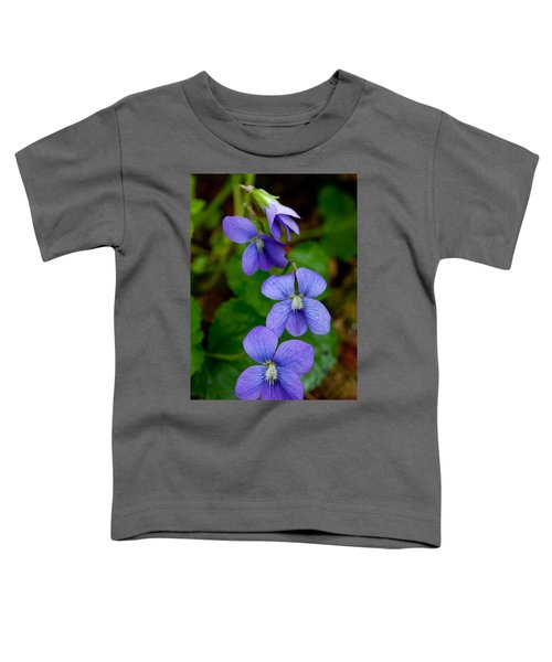 Three For The Show Toddler T-Shirt