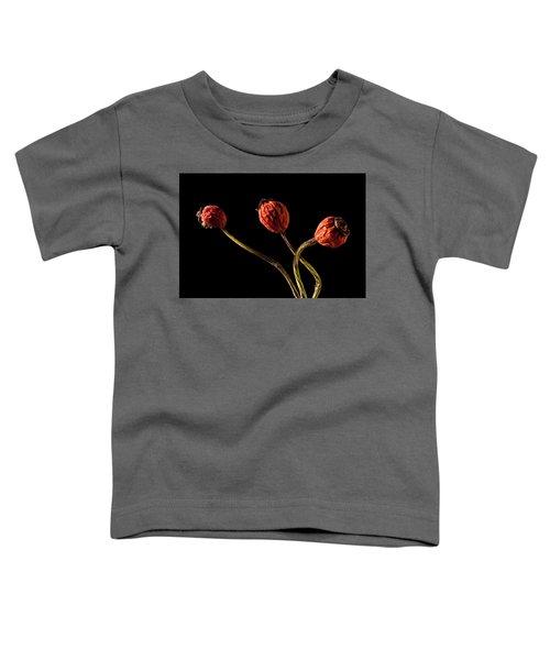 Three Rose Hips Toddler T-Shirt