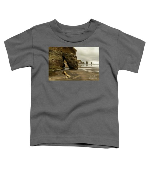 Three Sisters Toddler T-Shirt