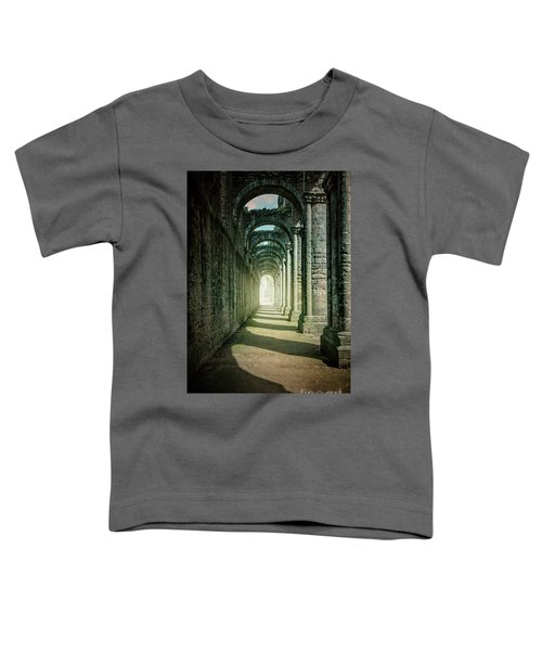 Through The Colonnade Toddler T-Shirt