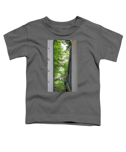 Through The Window Toddler T-Shirt