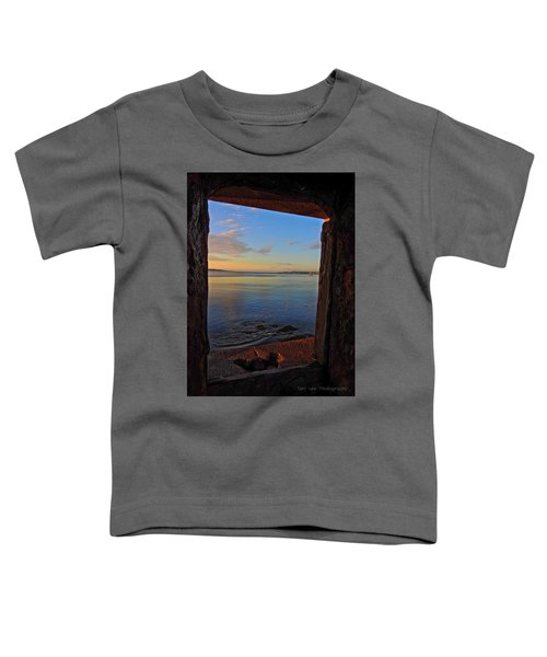 Through The Window Toddler T-Shirt