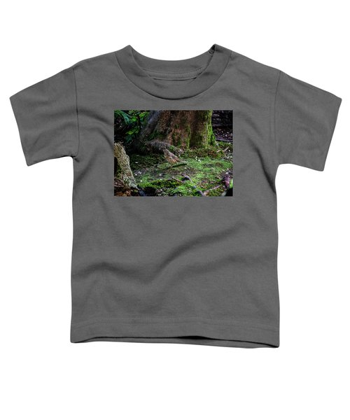 Thrush Toddler T-Shirt