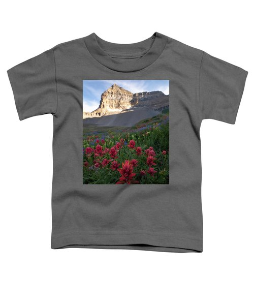 Timpanogos Paintbrush Toddler T-Shirt