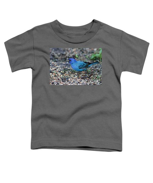 Tiny Indigo Bunting Toddler T-Shirt