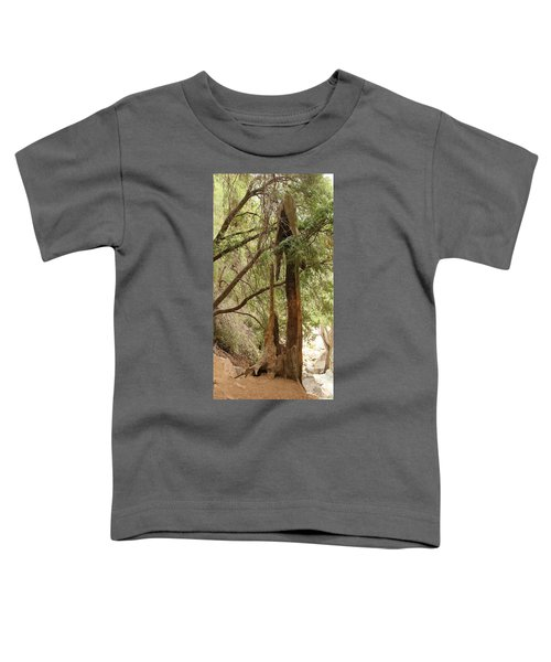 Totem Made By Nature Toddler T-Shirt