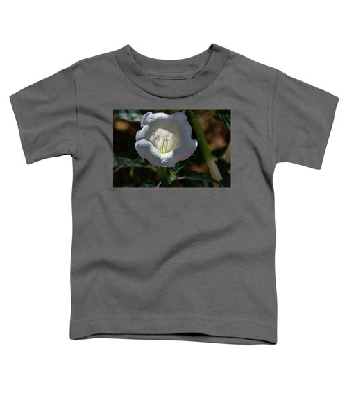 Touch Of Color Toddler T-Shirt
