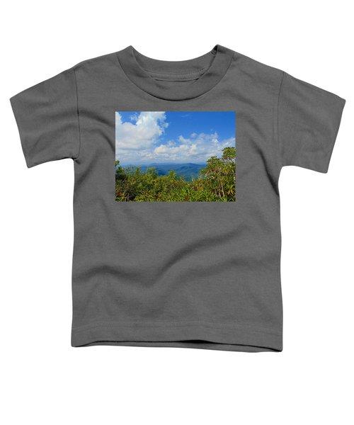 Tray Mountain Summit - South Toddler T-Shirt