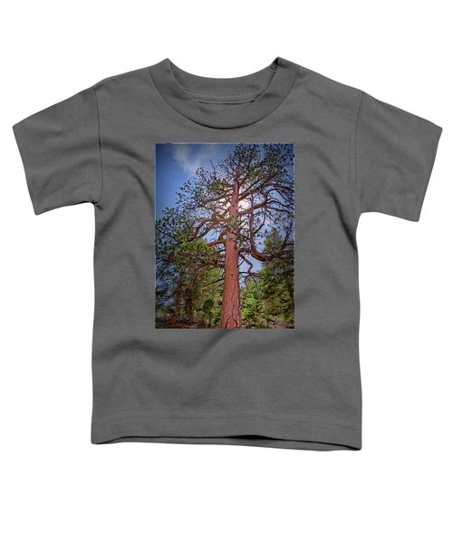 Tree Cali Toddler T-Shirt
