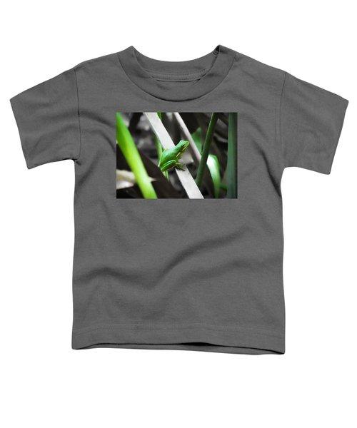 Tree Frog Toddler T-Shirt