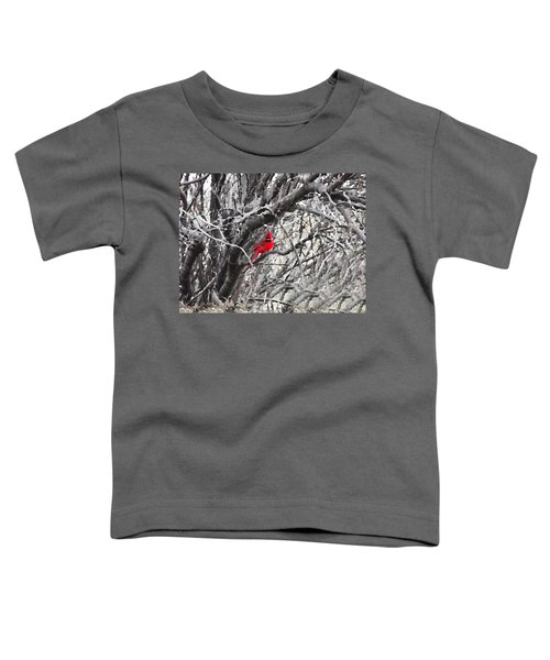 Tree Ornament Toddler T-Shirt