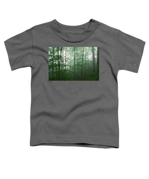 Trees In The Mist Toddler T-Shirt