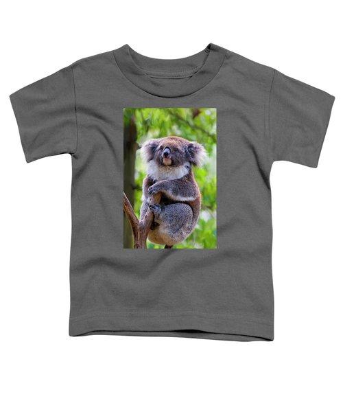 Treetop Koala Toddler T-Shirt