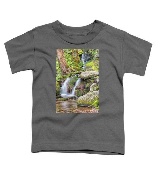 Tremont Road Waterfall Toddler T-Shirt