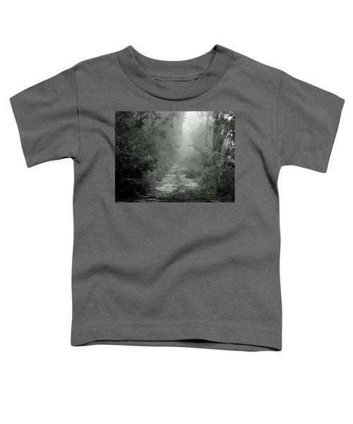 Tuatha De Danann Road Toddler T-Shirt