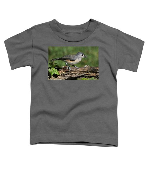 Tufted Titmouse On Tree Branch Toddler T-Shirt