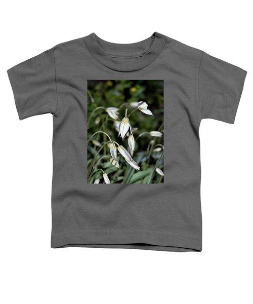 Tulipa Turkestanica Toddler T-Shirt