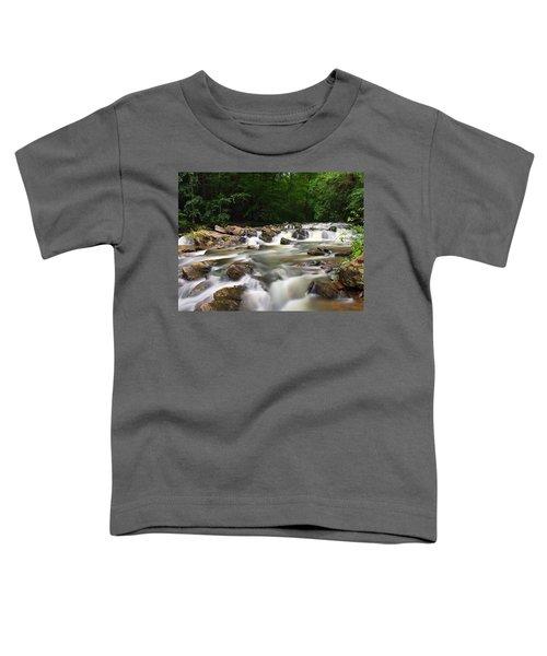 Tumbling Waters Toddler T-Shirt