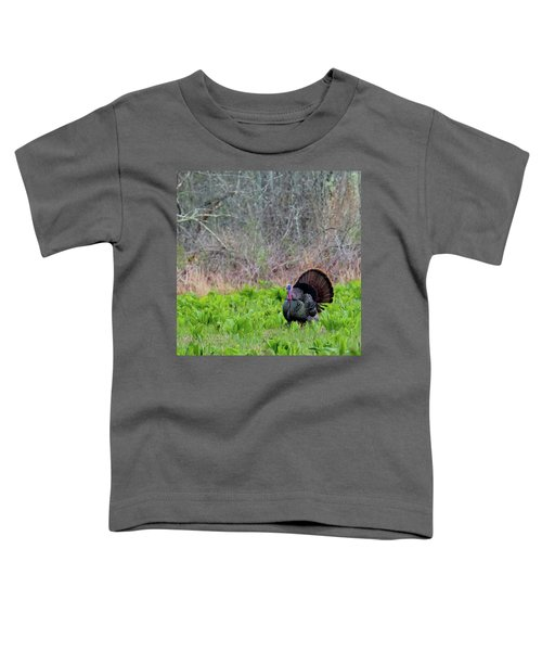 Toddler T-Shirt featuring the photograph Turkey And Cabbage Square by Bill Wakeley