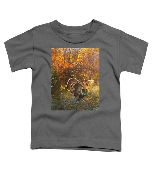 Turkey In The Woods Toddler T-Shirt