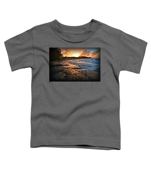 Turtle Bay Sunset 1 Toddler T-Shirt