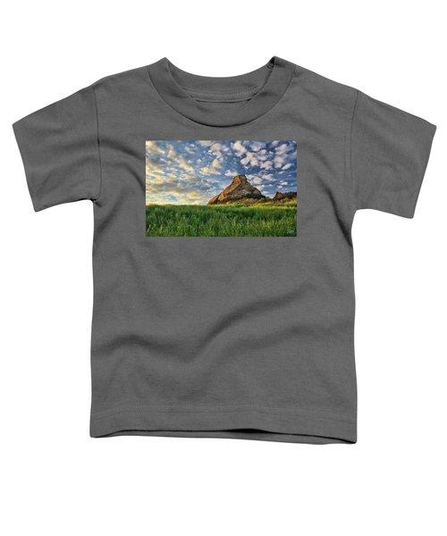 Turtle Rock At Sunset 2 Toddler T-Shirt