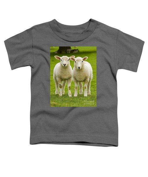 Twin Lambs Toddler T-Shirt