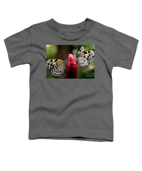 Two Butterflies Toddler T-Shirt