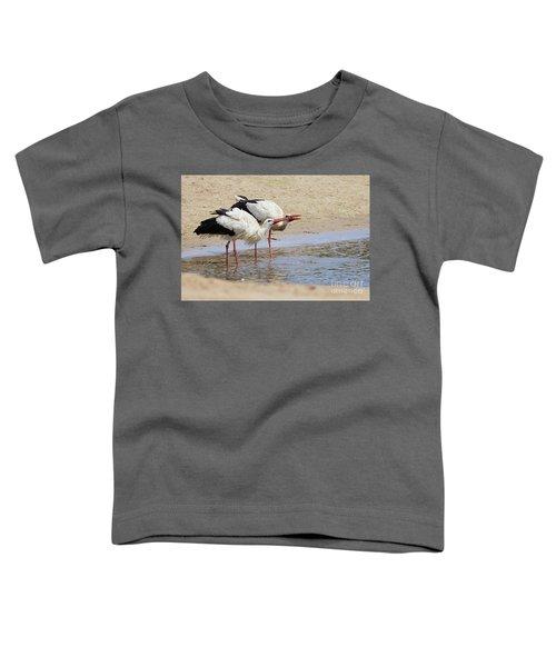 Two Drinking White Storks Toddler T-Shirt