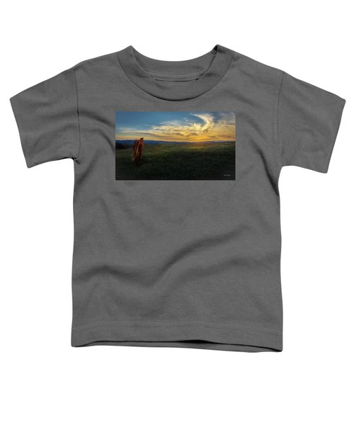 Under A Bright Evening Sky Toddler T-Shirt