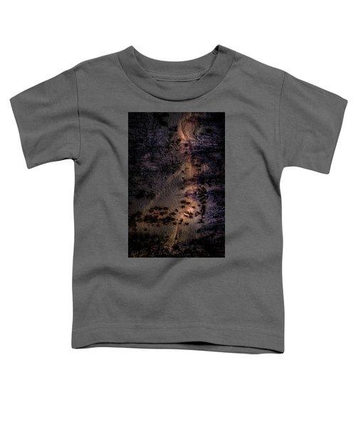 Underworld Light Toddler T-Shirt
