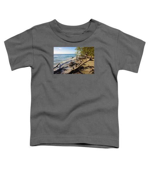 The Unspoiled Beaty Of Barefoot Beach Preserve In Naples, Fl Toddler T-Shirt