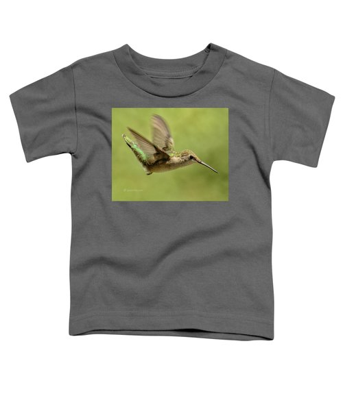 Untitled Hum_bird_one Toddler T-Shirt