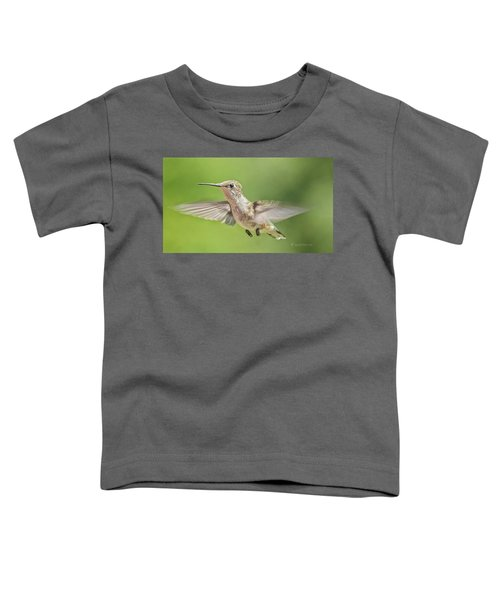 Untitled Hum_bird_three Toddler T-Shirt