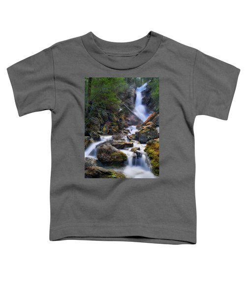 Toddler T-Shirt featuring the photograph Upper Race Brook Falls 2017 by Bill Wakeley
