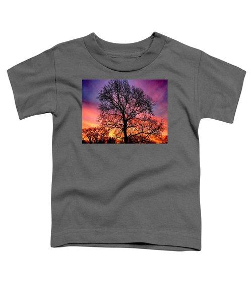 Velvet Mood Toddler T-Shirt