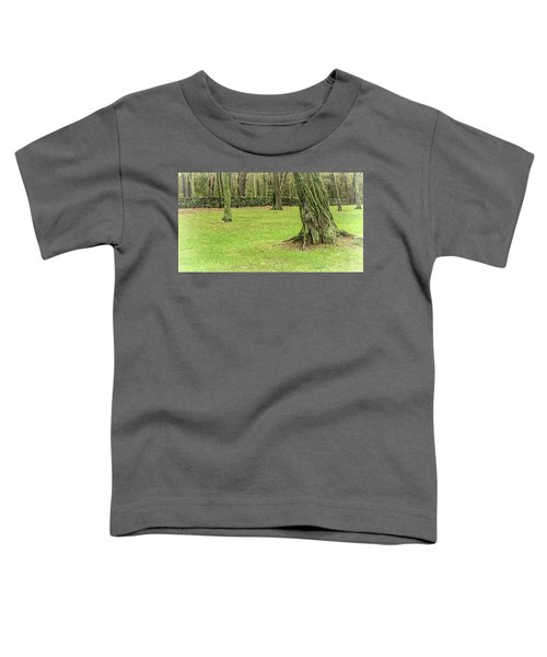 Venerable Trees And A Stone Wall Toddler T-Shirt