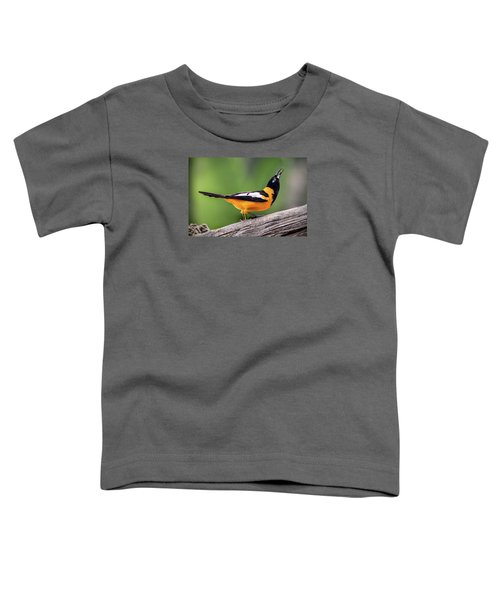Venezuelan Troupial Toddler T-Shirt