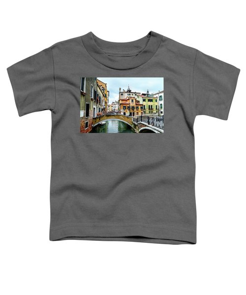 Venice Neighborhood Toddler T-Shirt