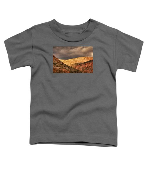 Verde Canyon View Pnt Toddler T-Shirt