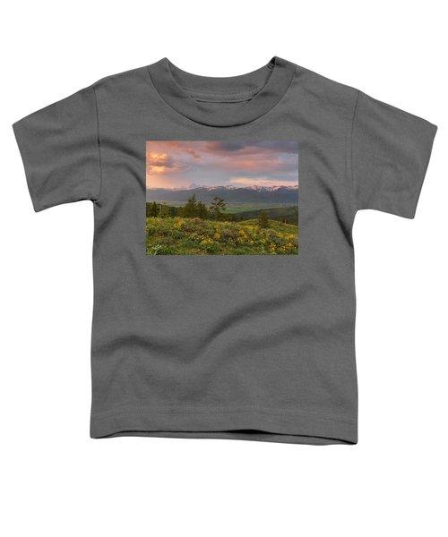 Victor Idaho Sunset Toddler T-Shirt