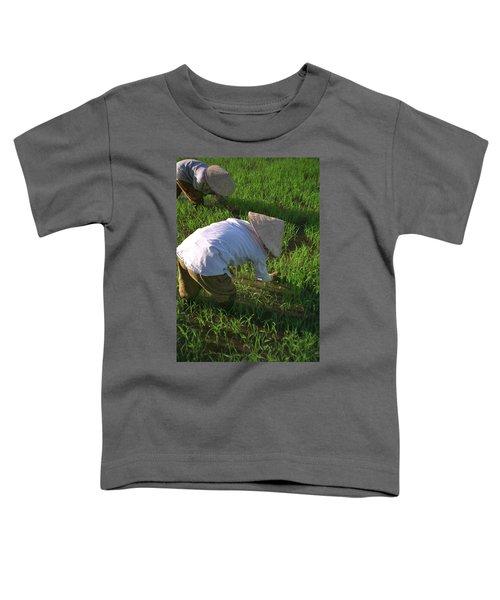 Vietnam Paddy Fields Toddler T-Shirt