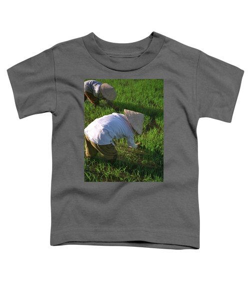 Toddler T-Shirt featuring the photograph Vietnam Paddy Fields by Travel Pics