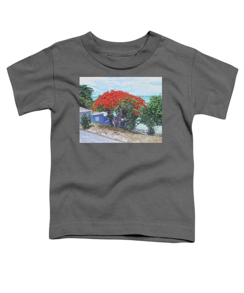 View From Hill Street Toddler T-Shirt