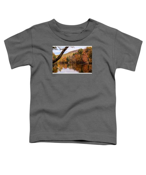 View From Manhan Rail Trail Toddler T-Shirt