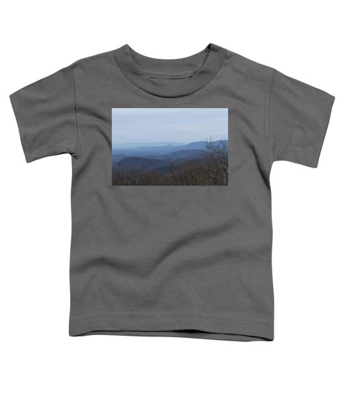 View From Springer Mountain Toddler T-Shirt